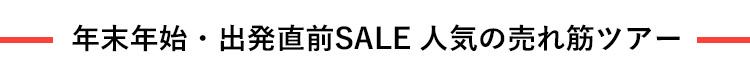 年末年始・出発直前SALE 人気の売れ筋ツアー