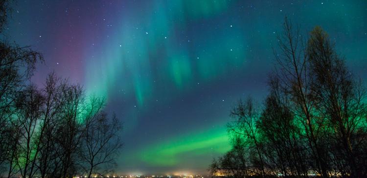 サーリセルカ(フィンランド)ツアー写真