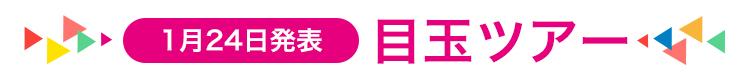 1月24日発表 目玉ツアー