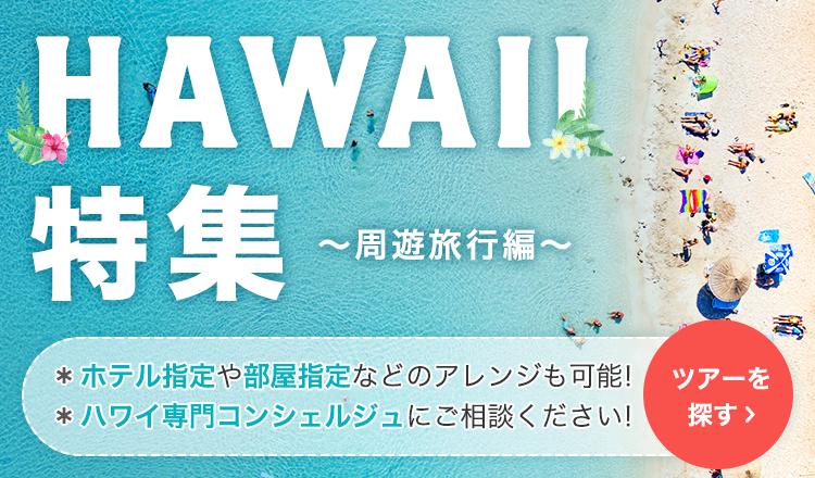 HAWAII特集