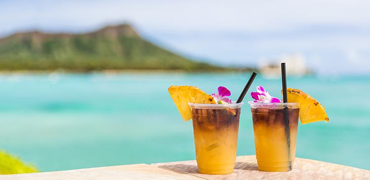ハワイ島+オアフ島ツアー写真
