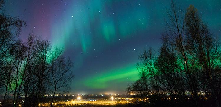 フィンランド3都市ツアー写真