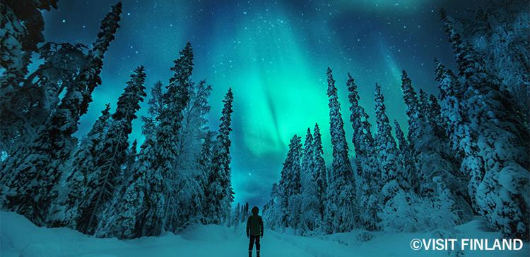 ロバニエミ(フィンランド)ツアー写真