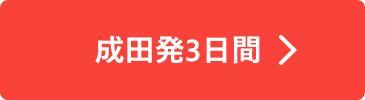 成田発3日間