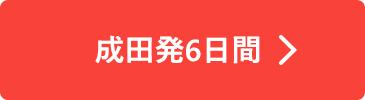 成田発6日間
