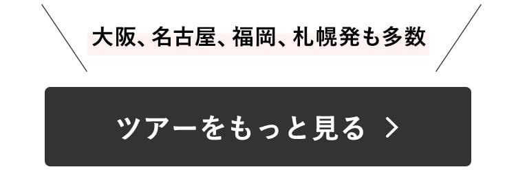 大阪、名古屋、福岡、札幌発も多数、ツアーをもっとみる