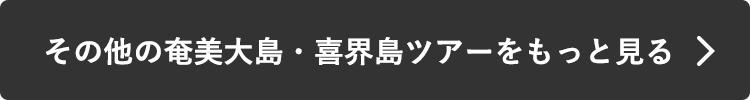 その他の奄美大島・喜界島ツアーをもっと見る