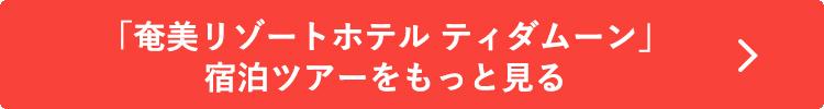 「奄美リゾートホテル ティダムーン」宿泊ツアーをもっと見る