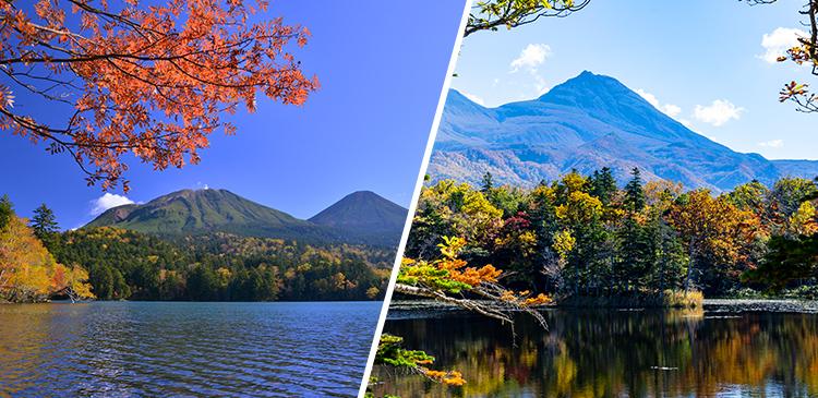 釧路+ウトロ温泉(知床)ツアー写真