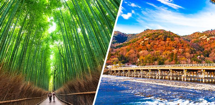 京都嵐山温泉 花伝抄 ツアー写真