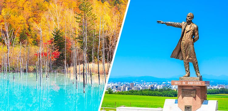 札幌+旭山動物園&美瑛日帰りバスツアー付き ツアー写真