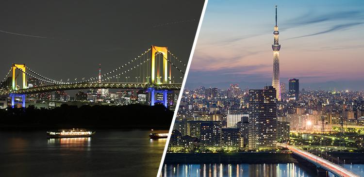 屋形船ディナー+都内ホテル1泊 ツアー写真