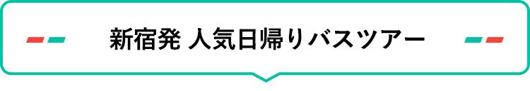 新宿発 人気日帰りバスツアー