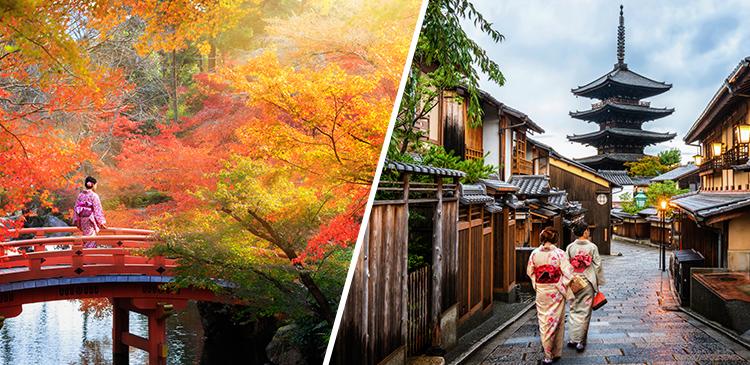 ホテルマイステイズ京都四条 ツアー写真