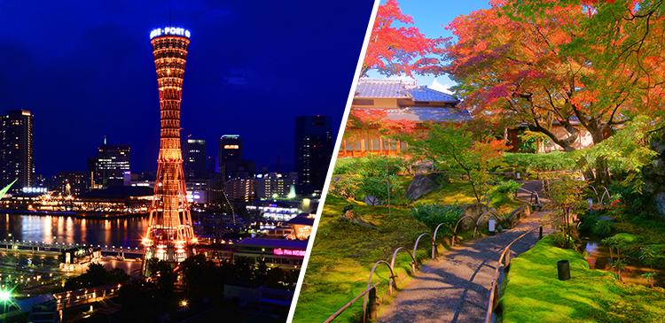 神戸+京都 周遊プラン ツアー写真