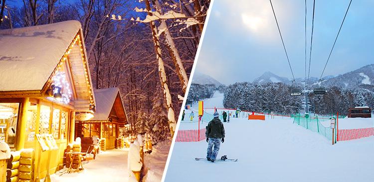 富良野スキー場(北海道)ツアー写真