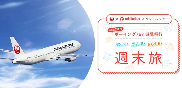 羽田発着 【JALx旅工房】遊覧飛行ツアー 2日間 ツアー写真