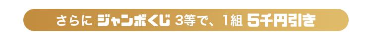 さらにジャンボくじ3等で、1組5千円引き