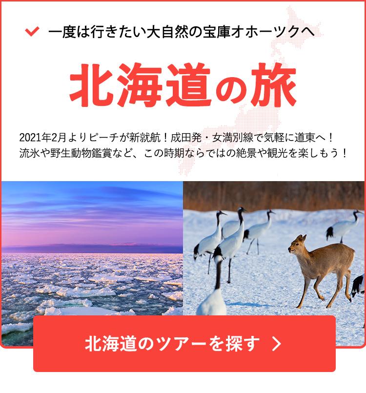 ピーチ女満別線で行く北海道ツアー特集