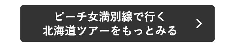 ピーチ女満別線で行く北海道ツアーをもっとみる